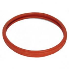 Color Splash LPL-G-P Pentair Light Gasket