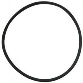 Pentair EQ Commercial Pump Lid Gasket 350166